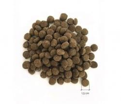 Eat Small WALD Hundefutter Trockenfutter mit Insektenprotein