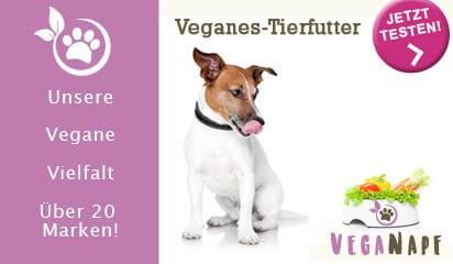 KombiEInkauf: Bio - Vegan - Insekten. Jetzt bestellen!